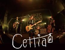 Cettia