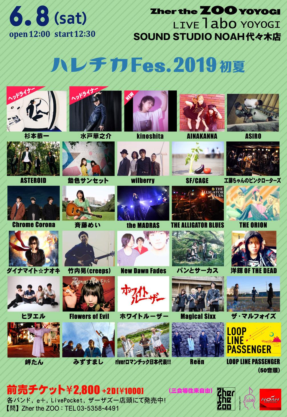【フライヤー】ハレチカFes2019